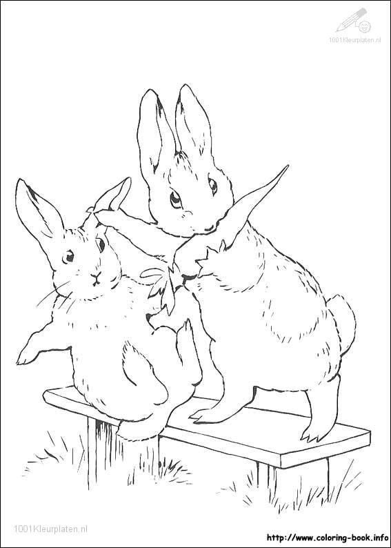 Kleurplaat: kleurplaat-konijn-6