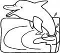 Kleurplaat Dolfijn >> Kleurplaat Dolfijn