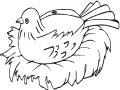 Kleurplaat Broedende Vogel