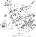 Prehistorische Dinosaurus>> Prehistorische Dinosaurus