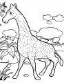 Kleurplaat Giraffe>> Kleurplaat Giraffe