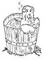 Kleurplaat Hond in bad