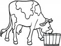 Kleurplaat Koe en Varken >> Kleurplaat Koe en Varken