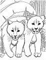Leeuwen Welpje >> Kleurplaat Leeuwen Welpje