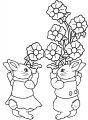 Jonge konijntjes>> Jonge konijntjes