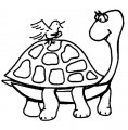 Kleurplaat Schildpad >> Kleurplaat Schildpad